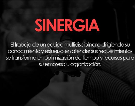 SINERGIA-TRUSTINVESTMENT